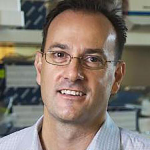 Simon Gregory, PhD